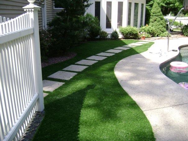 Maintenance free, water free lawn