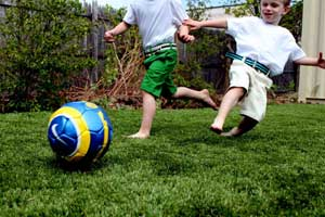 Safe, fun backyard turf