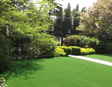 Turf Lawns in Boston