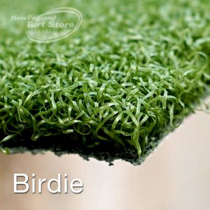 New England Turf Store view of our Birdie golf product