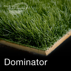 Side view of our Dominator line of sports turf