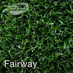 Product image of our Fairway synthetic surface