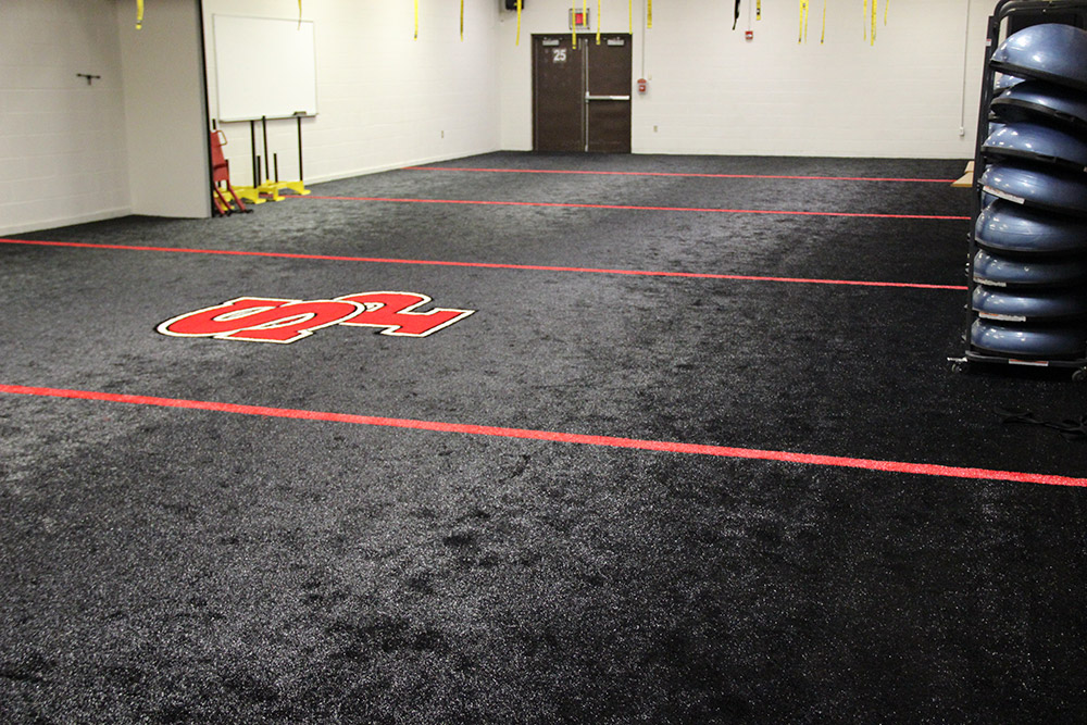 Indoor turf for sports