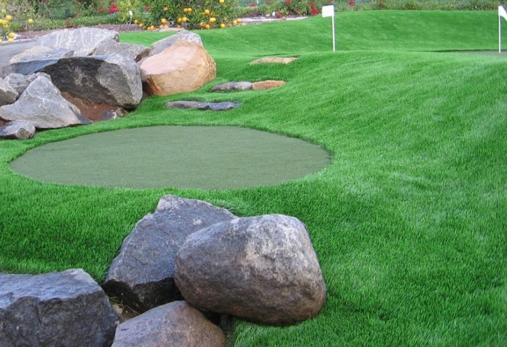 Beautiful Backyard Turf Green