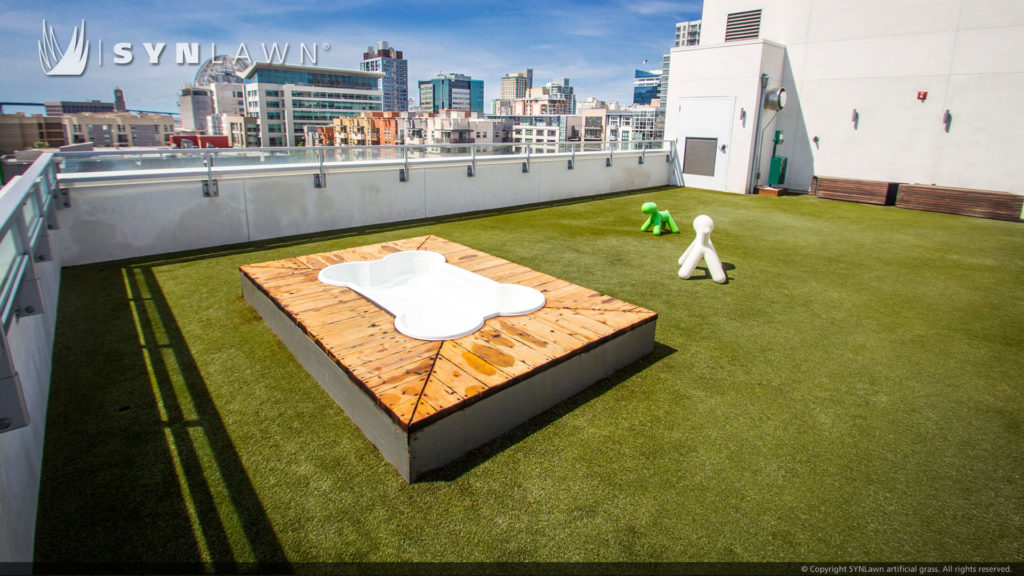 Roof deck with artificial turf surface for dogs