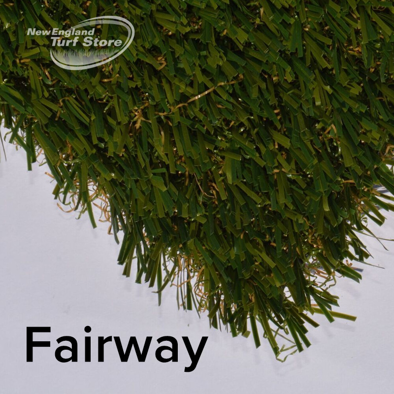 Fairway turf for golf greens