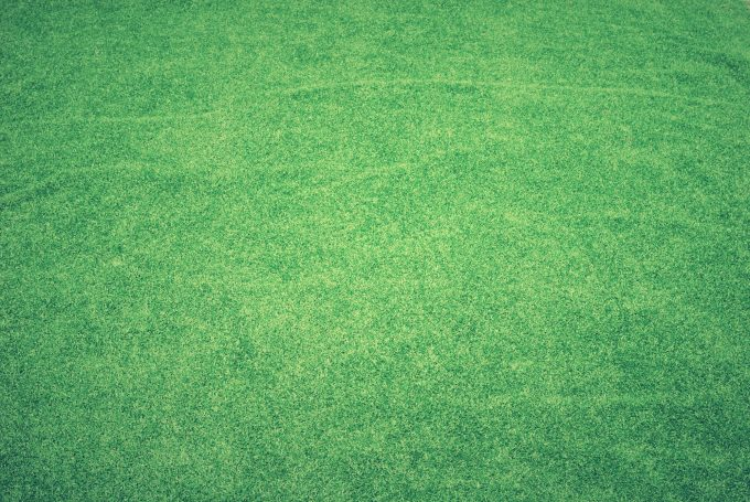 fake turf grass