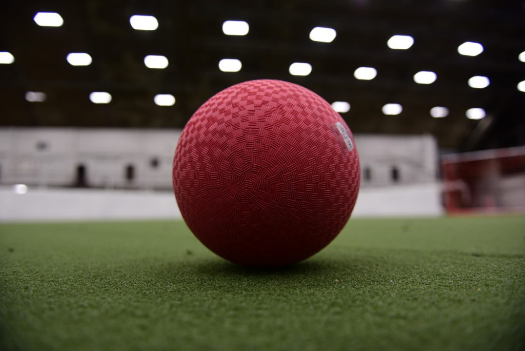 indoor turf fields