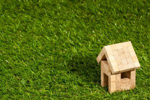 Buy artificial grass